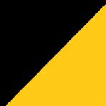 Μαύρο – Χρυσό